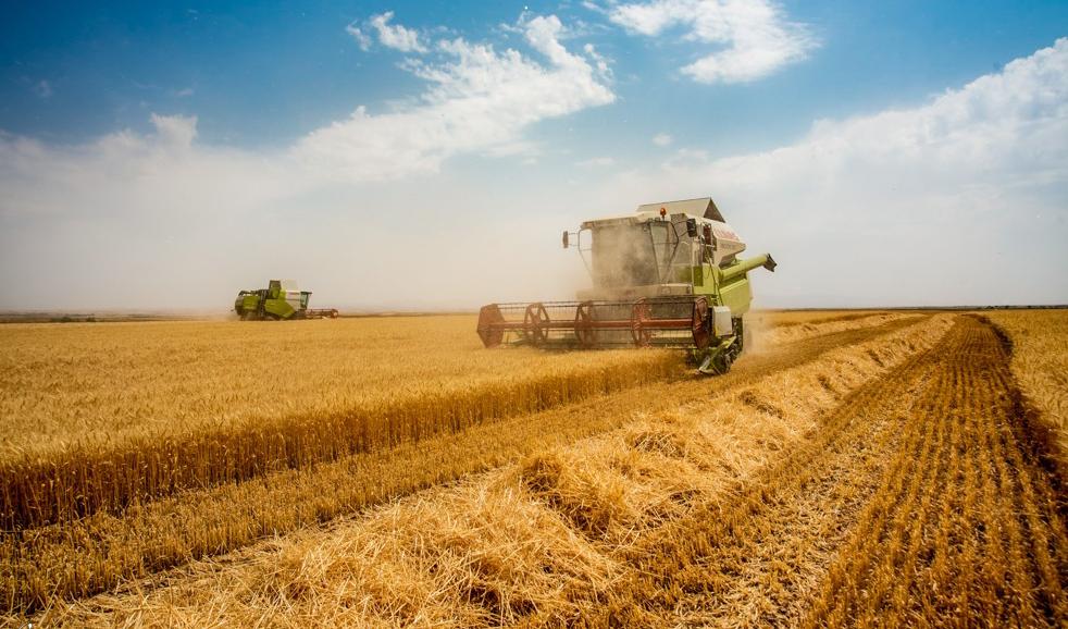 یارانه جدید برای کشاورزان/ آیا طرح جدید وزیر جهاد مشکلات کشاورزی را حل میکند؟