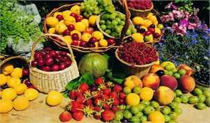 موافقت ستاد تنظیم بازار با عرضه مستقیم تک محصولی در میادین میوه و تره بار ویژه شب یلدا