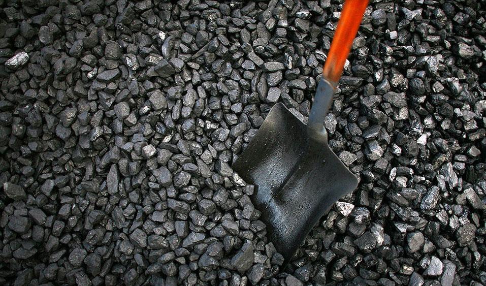 «گنج سیاه» که به «پول سیاه» فروختیم/ چرا دنیا به سمت توسعه زغالسنگ رفت، ایران به سمت نابودی آن؟