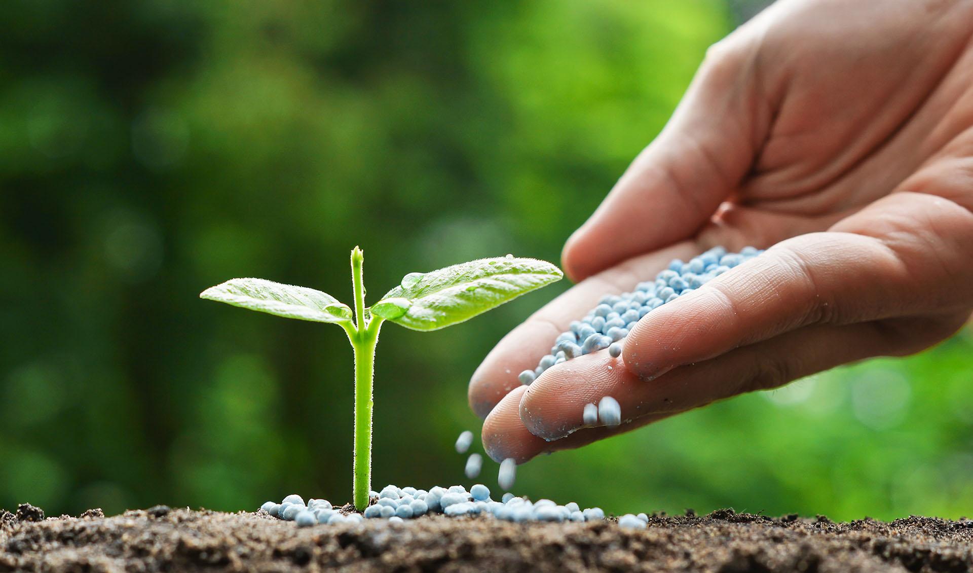 افزایش ۳۰ درصدی تحویل کود اوره پتروشیمیها به بخش کشاورزی