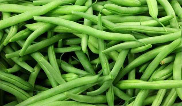 کاهش قیمت لوبیا سبز ظرف ۲۰ روز آینده/ عرضه نارنگی رو به پایان است