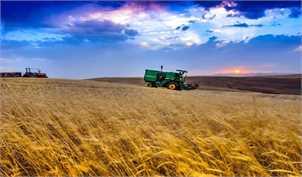 ۶۰روز ازابلاغ قانون اصلاح خرید تضمینی گذشت/کشاورزان منتظر تشکیل شورای قیمتگذاری