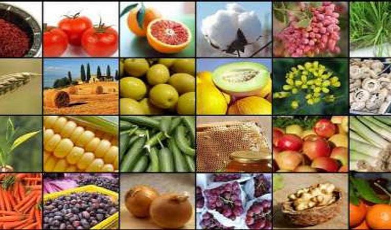 با تعیین نشان جغرافیایی تجاری سازی ۴ محصول کشاورزی ایران سرعت میگیرد