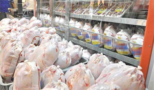 ۹۲۲ تن مرغ امروز در تهران توزیع شد