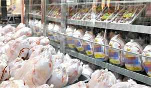 مجوز واردات مرغ با ارز دولتی افزایش یافت