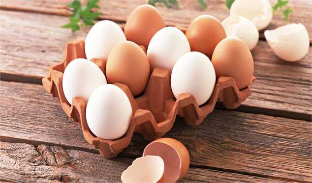 صادرات تخم مرغ متوقف شد/ حداکثر قیمت هر شانه تخممرغ ۳۱ هزار تومان