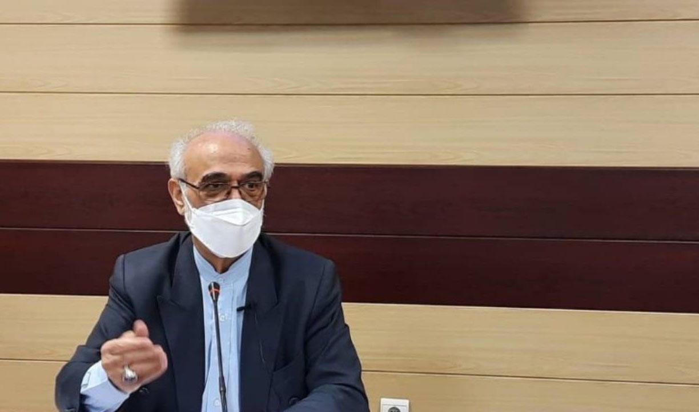 ایروانی: نهادهای انقلابی جزء خوش حسابترین مؤدیان مالیاتی هستند