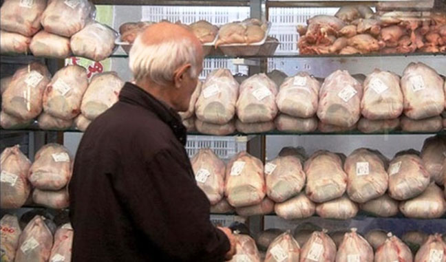 قاچاق مرغ از شهرستانها به تهران برای کسب سود بیشتر/ برطرف شدن کمبود مرغ در آبان ماه