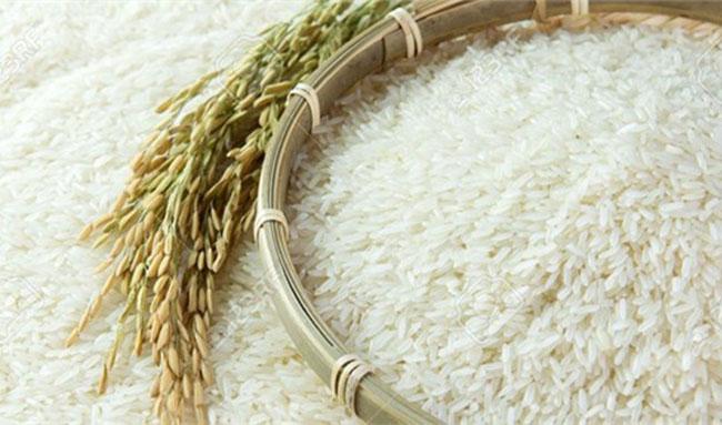 قیمت برنج همچنان میتازد