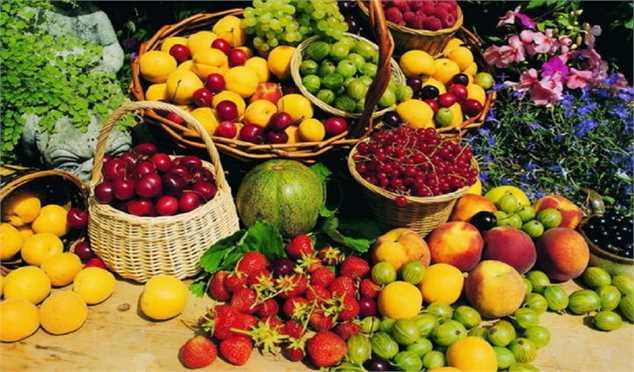 ثبات قیمت میوه طی ماه آینده به دلیل تنوع میوههای تابستانه