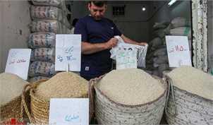 درخواست انجمن واردکنندگان برنج از دولت: اجازه دهید برنج بیکیفیت وارد کنیم!