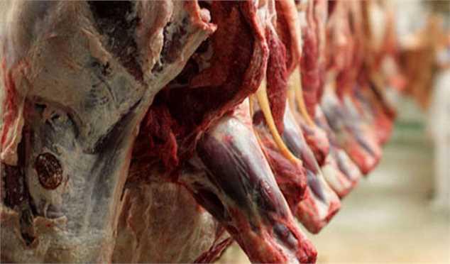 عرضه گوشت قرمز در بازار ۴۳ درصد افزایش یافت