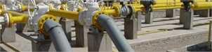 نشست پیگیری تأمین سوخت زمستانی با حضور وزیر نفت برگزار شد