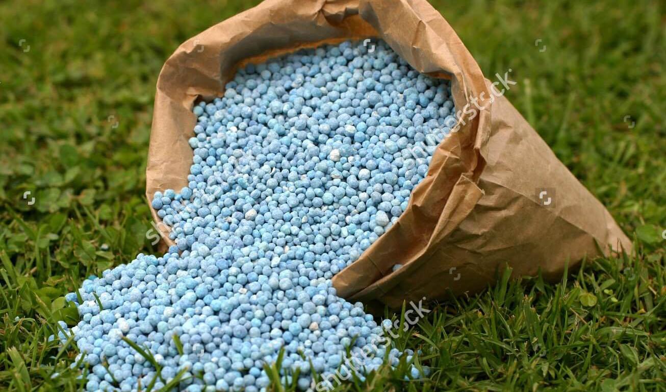 تحویل کود اوره به کشاورزان بدون کودهای فسفاته و پتاسه ممنوع شد